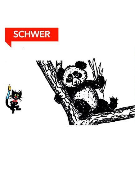 Wie malt man einen Panda